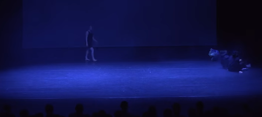 SHADOWS 2015 Show We were in love